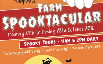 Living the Dream: Dressing up on the farm for spooky childrens' fun