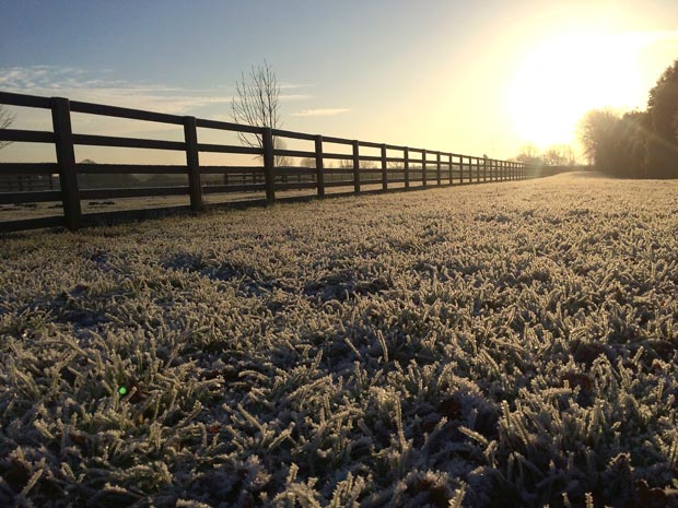 Living the Dream: The joys of a frosty morning!