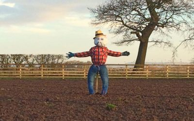 Living the Dream: Meet Worzel Gummidge the Scarecrow